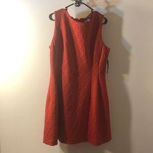 🍁brand new elegant dress Eva Mendes